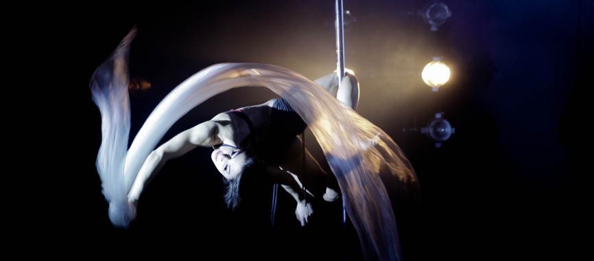 Pole Dance-Barman 3D